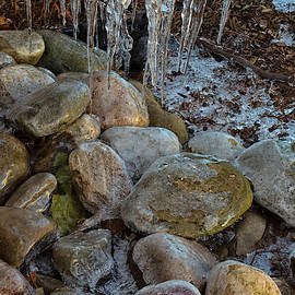Encased In Ice by Denise Harty
