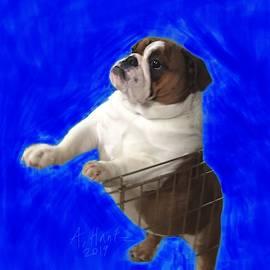 English Bulldog Gert, Climbing Fence 2 by Adrienne Hantz Kelley