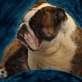 English Bulldog Gus, Relaxing 3 by Adrienne Hantz Kelley