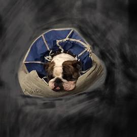 English Bulldog Gus, Sleeping As He Recovers 2 by Adrienne Hantz Kelley