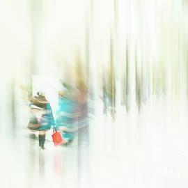 Entering A Portal by Marilyn Cornwell