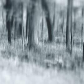 Escape by Angie Tirado