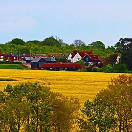 Essex Countryside in early May by Loretta S