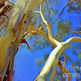 Eucalyptus Collage by Christina Ford
