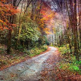 Evening on the Autumn Trail by Debra and Dave Vanderlaan
