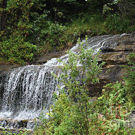Every Teardrop Is A Waterfall by Scott Ward