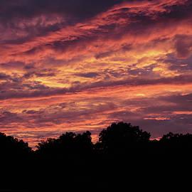 Skies Ablaze by Jessica Jenney