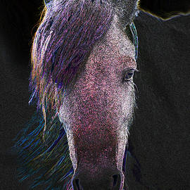 Face Of A Horse 642 -- Painting by Ericamaxine Price