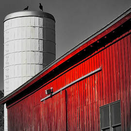Fading Barn by Jack Wilson