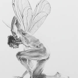 Fairy Dancer by Marc DeBauch