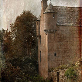 Liz Alderdice - Fairytale Castle