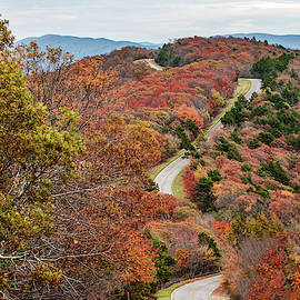 Fall Along The Talimena Scenic Drive Byway - Oklahoma by Gregory Ballos