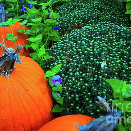 Fall and The Pumpkins by Diana Mary Sharpton