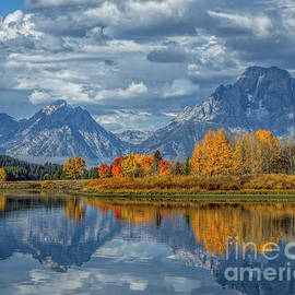 Fall at the Tetons by Dale Erickson