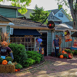 Fall Festival by Denise Harty
