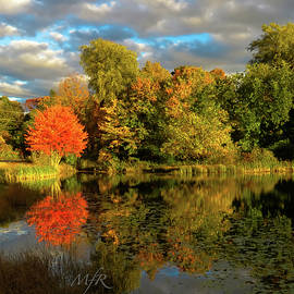 Fall in Hampstead, NH by Maureen Rose