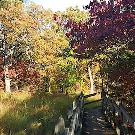 Fall in Missouri.Ha Ha Tonka State Park