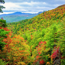 Fall In The Smokies by Andy Crawford