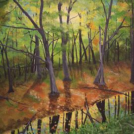Fall Reflection by Rick Mcclelland