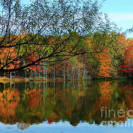 Fall Reflections by Southern Arts