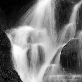Falling Water, Mount Rainier National Park, Black And White by Douglas Taylor