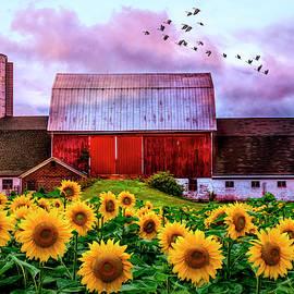 Farmer's Field by Debra and Dave Vanderlaan