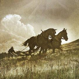 Fassbender's Plow Horses by R christopher Vest