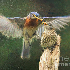 Feeding His Fledgling by Tina LeCour