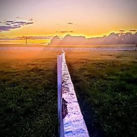 Fenceline by Paul Kercher