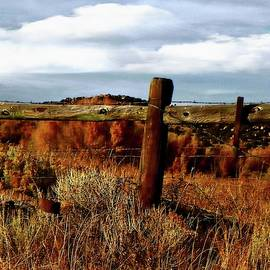 Fencing the Land by Lenore Senior