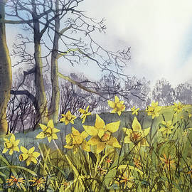 Field of Hope at Burton Agnes by Glenn Marshall