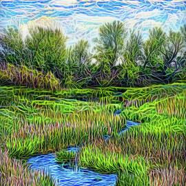 Field Of Streams by Joel Bruce Wallach