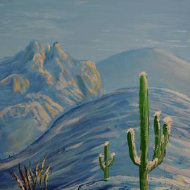 Finger Rock Trail Snow, Tucson, Arizona by Chance Kafka
