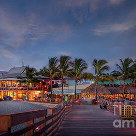 Fins and Sharky's at the Pier in Venice, Florida by Liesl Walsh