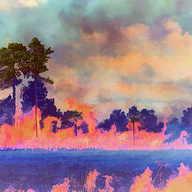 Fire And Pine Stand by Robert Potts