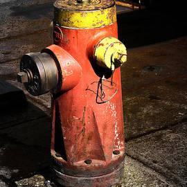 Fire Plug by Gina Geldbach-Hall