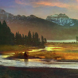 First Light, Lamar River Yellowstone Grizzly by R christopher Vest