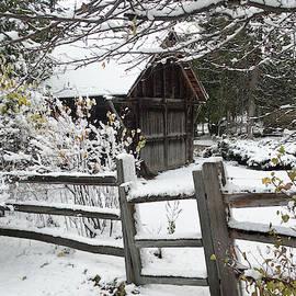 David T Wilkinson - First Snow