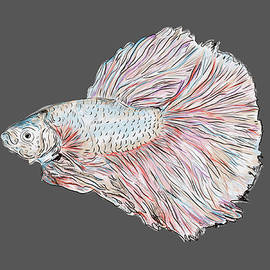 Fish Painting by Marshal James