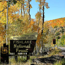 Fishlake National Forest Sign by Donna Kennedy