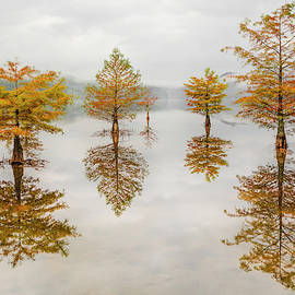 Floating into Autumn by Debra and Dave Vanderlaan