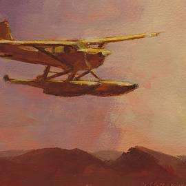 Floatplane Paradise by Bill Tomsa