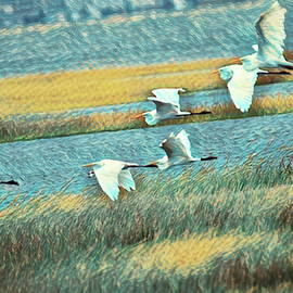 Flock of Great Egrets by Geraldine Scull