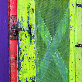 Florescent Shed Door by Jurgen Lorenzen