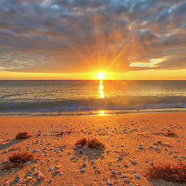 Florida Sunrise at Delray Beach by Juergen Roth