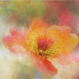 Flower after Fire by Terry Davis