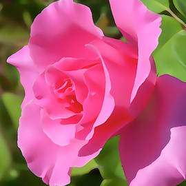 Flower Impression #24 by Dimitris Sivyllis