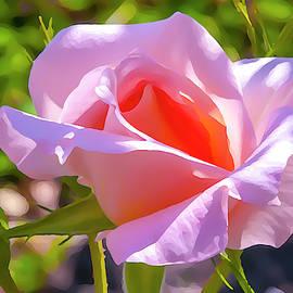 Flower Impression #6 by Dimitris Sivyllis