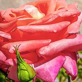 Flower Impression #9 by Dimitris Sivyllis