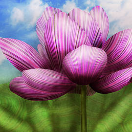 Flower - Lotus - The symbol of Purity by Mike Savad